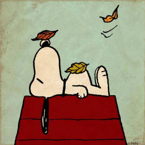 bashpics/snoopy-fall-autumn-leaves.jpg